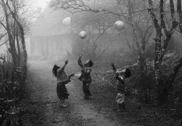 جنگل,بازی کودکان,توپ بازی,