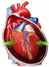 تامپوناد قلب