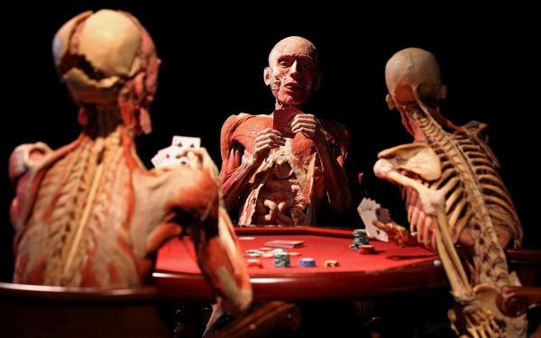 آناتومی سه اسکلت در حال صحبت و مناظره