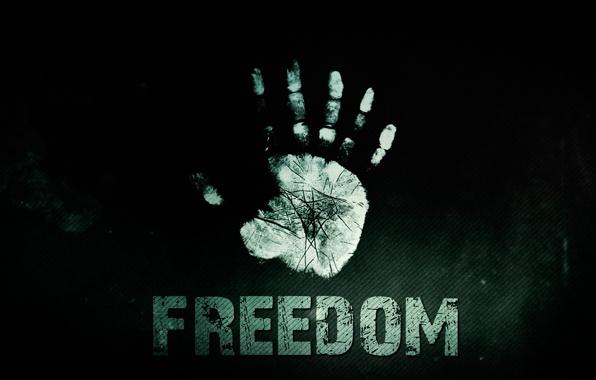 svoboda-freedom-2013-gran-za