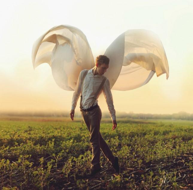 Wings-645x634
