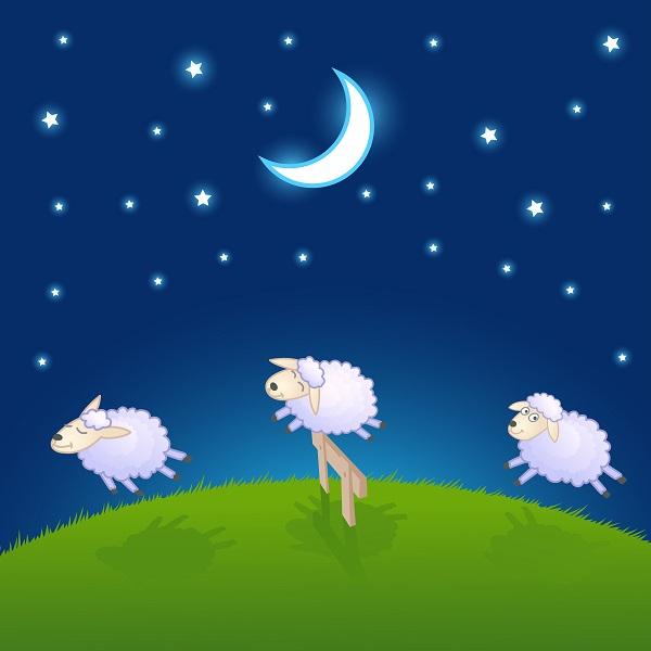 Farm Animals At Night