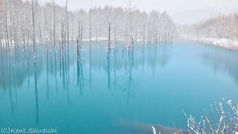 The-Most-Beautiful-Pond-in-the-World-16__880