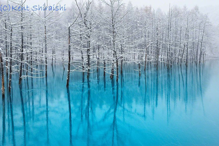 The-Most-Beautiful-Pond-in-the-World-1__880