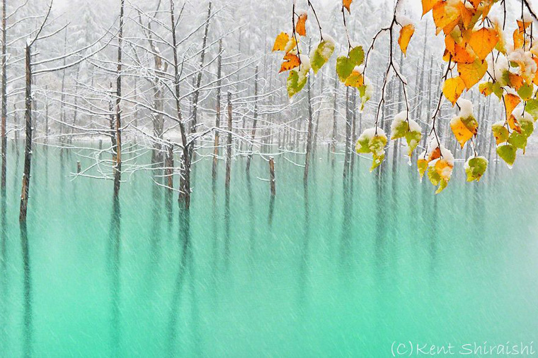 The-Most-Beautiful-Pond-in-the-World-2__880