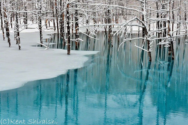 The-Most-Beautiful-Pond-in-the-World-8__880