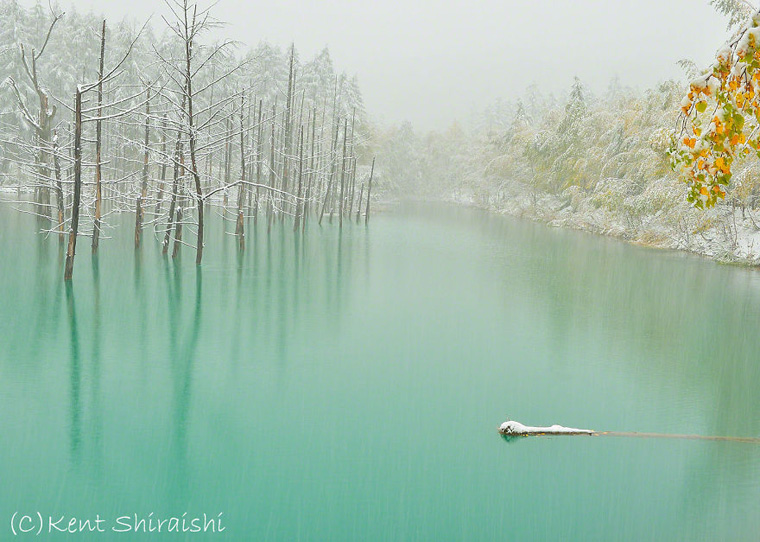 The-Most-Beautiful-Pond-in-the-World-__880