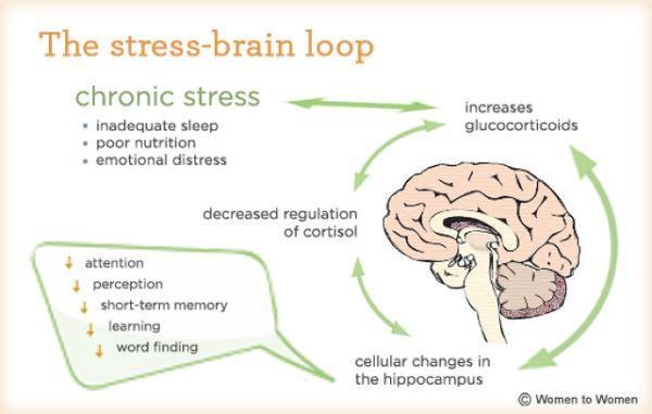 stresschart