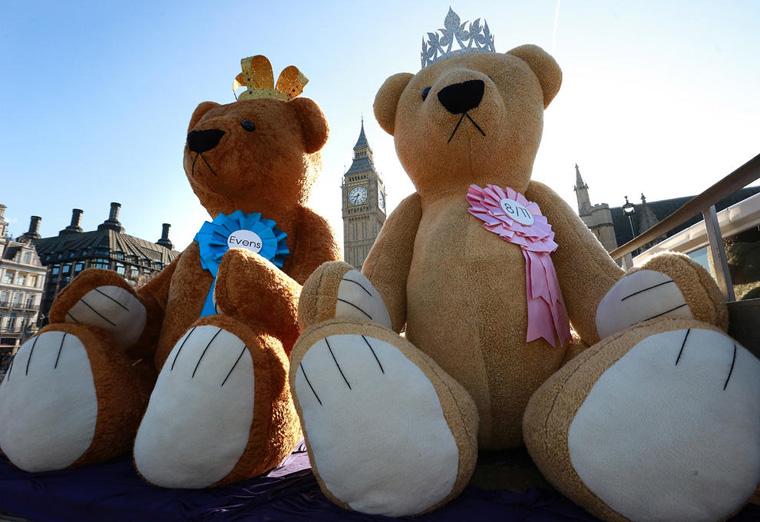 Teddy Bears for Royal Baby
