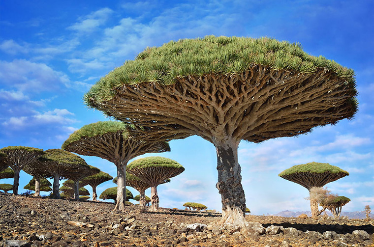 alien-places-look-like-other-worlds-22__880