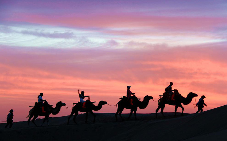 Tourists Ride Camels in China