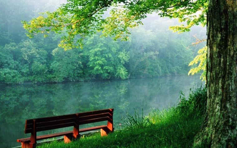 Beauty-of-nature-random-4884759-1280-800