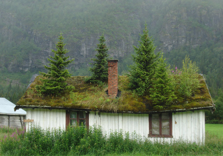 fairy-tale-viking-architecture-norway-4__880